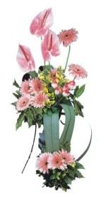 İzmir Konak çiçek siparişi sitesi  Pembe Antoryum Harikalar Rüyasi