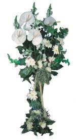 İzmir Konak hediye çiçek yolla  antoryumlarin büyüsü özel