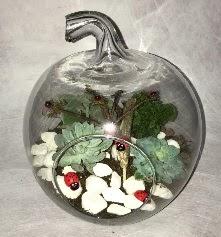 Küçük terrarium elma 3 kaktüs  İzmir Konak hediye çiçek yolla