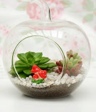 Küçük elma terrarium 3 kaktüs  İzmir Konak çiçek yolla , çiçek gönder , çiçekçi