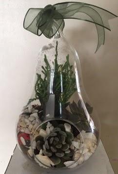 Orta boy armut terrarium 3 kaktüs  İzmir Konak çiçek siparişi sitesi