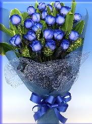 19 adet eşsiz mavi gül buketi  İzmir Konak çiçek yolla