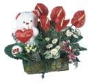 İzmir Konak internetten çiçek satışı  Lilyum ve oyuncakli arajman