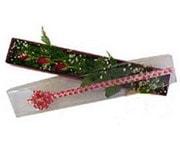 İzmir Konak çiçek online çiçek siparişi  3 adet gül.kutu yaldizlidir.