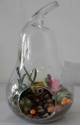 Orta boy cam armut terrarium  İzmir Konak 14 şubat sevgililer günü çiçek