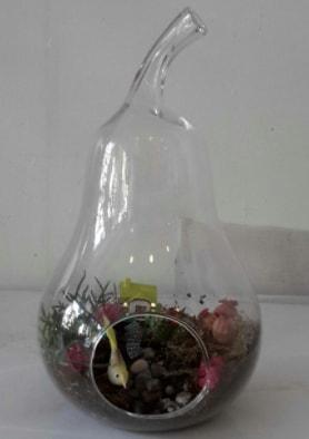 Armut orta boy cam terrarium tanzim  İzmir Konak uluslararası çiçek gönderme