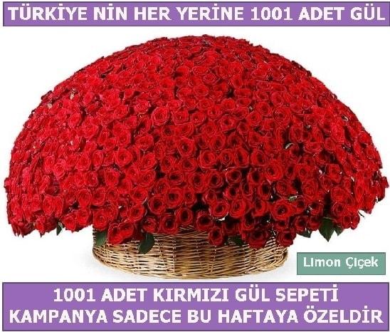 1001 Adet kırmızı gül Bu haftaya özel  İzmir Konak çiçek siparişi vermek