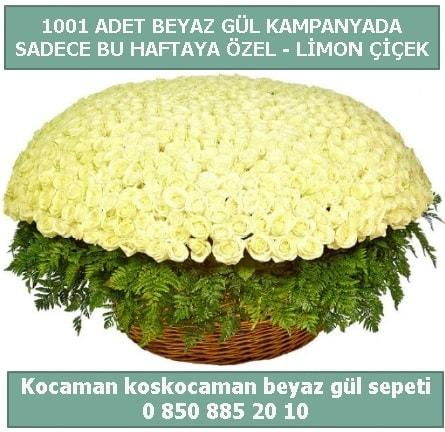1001 adet beyaz gül sepeti özel kampanyada  İzmir Konak online çiçek gönderme sipariş