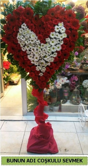 Coşkulu bir aşk çiçeği  İzmir Konak hediye sevgilime hediye çiçek