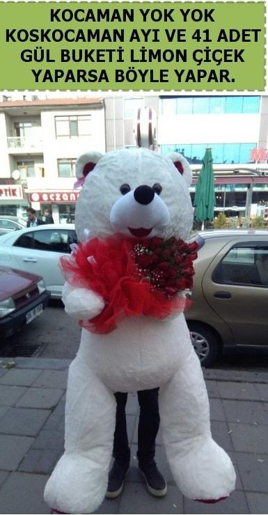 Koskocaman beyaz ayı ve 25 adet gül  İzmir Konak çiçek mağazası , çiçekçi adresleri