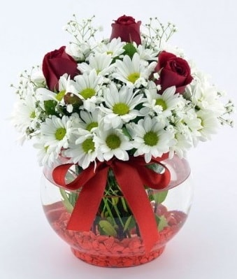Fanusta 3 Gül ve Papatya  İzmir Konak kaliteli taze ve ucuz çiçekler