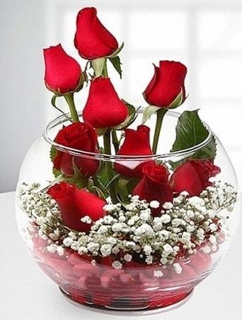 Kırmızı Mutluluk fanusta 9 kırmızı gül  İzmir Konak çiçek mağazası , çiçekçi adresleri
