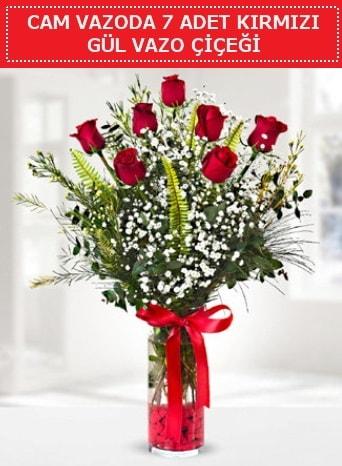 Cam vazoda 7 adet kırmızı gül çiçeği  İzmir Konak online çiçek gönderme sipariş