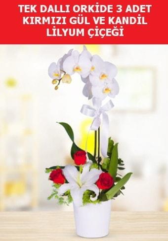 Tek dallı orkide 3 gül ve kandil lilyum  İzmir Konak cicek , cicekci