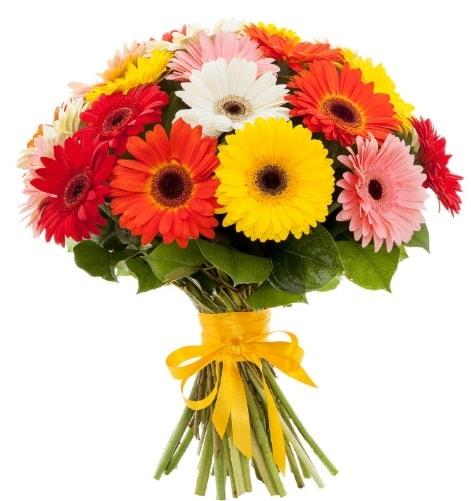 Gerbera demeti buketi  İzmir Konak 14 şubat sevgililer günü çiçek