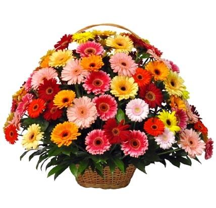 Karışık renkli büyük gerbera sepet aranjmanı  İzmir Konak online çiçek gönderme sipariş