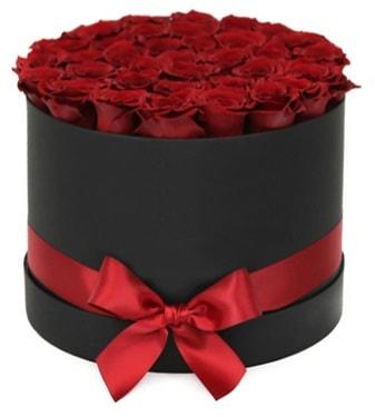 Siyah Kutuda 25 adet kırmızı gül  İzmir Konak online çiçek gönderme sipariş
