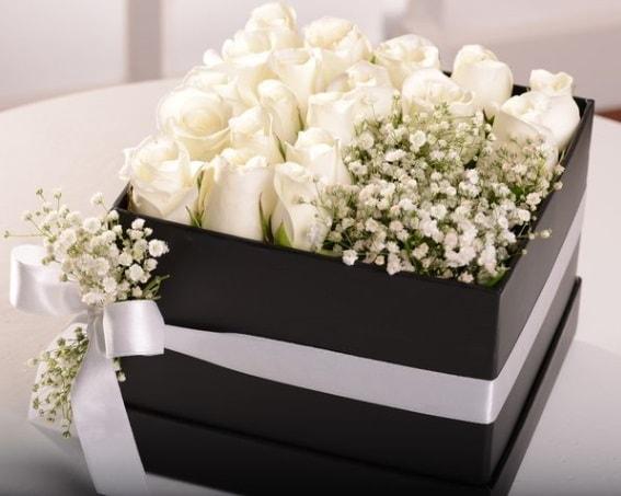 Kutu içerisinde 19 beyaz gül ve cipsofilya  İzmir Konak anneler günü çiçek yolla