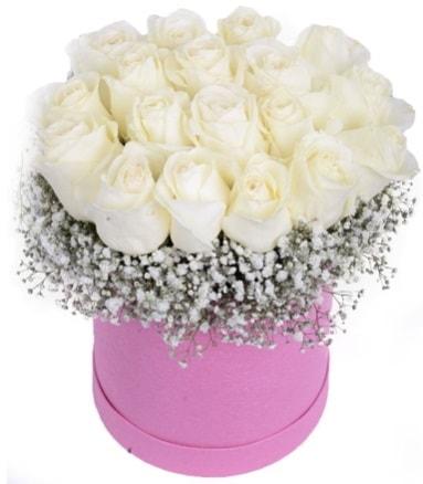 Renkli kutuda 19 adet beyaz gül  İzmir Konak kaliteli taze ve ucuz çiçekler