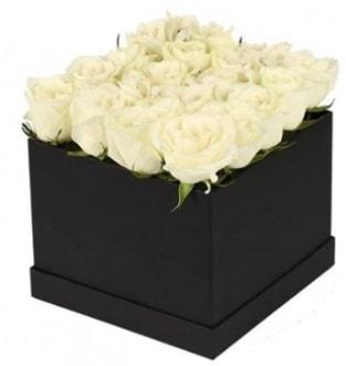 Kare kutuda 19 adet beyaz gül aranjmanı  İzmir Konak uluslararası çiçek gönderme