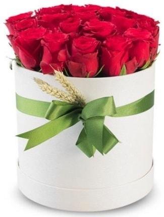 25 adet özel kutuda kırmızı gül  İzmir Konak çiçek gönderme sitemiz güvenlidir  söz çiçekler