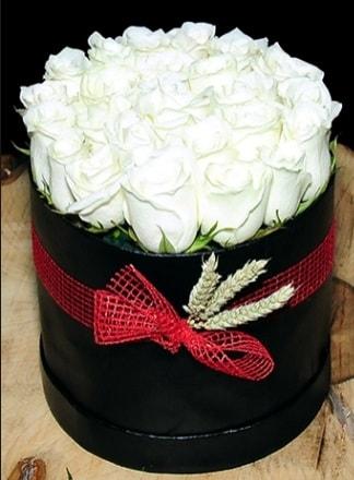 Özel kutuda 27 adet beyaz gül  İzmir Konak çiçek gönderme sitemiz güvenlidir