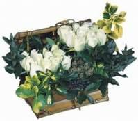 İzmir Konak güvenli kaliteli hızlı çiçek  13 adet sandikta beyaz gül