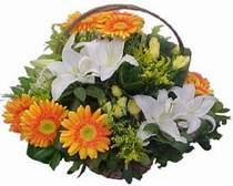 İzmir Konak çiçekçiler  sepet modeli Gerbera kazablanka sepet