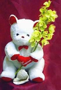İzmir Konak çiçek yolla , çiçek gönder , çiçekçi   Oyuncak ve kaliteli orkide