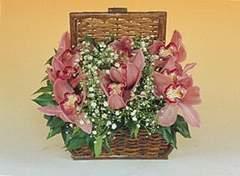 İzmir Konak çiçek gönderme sitemiz güvenlidir  Sepet içerisinde orkide